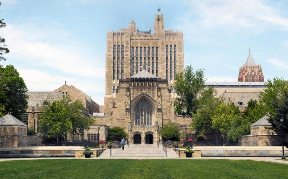 What is an ivy league university/college like?