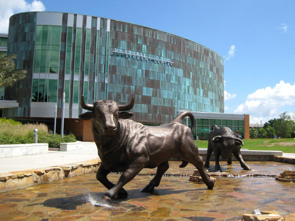 university of south florida great value colleges usf