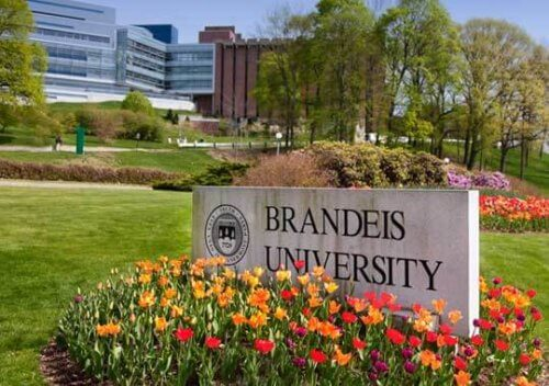 Brandeis University - Online Degree Boston