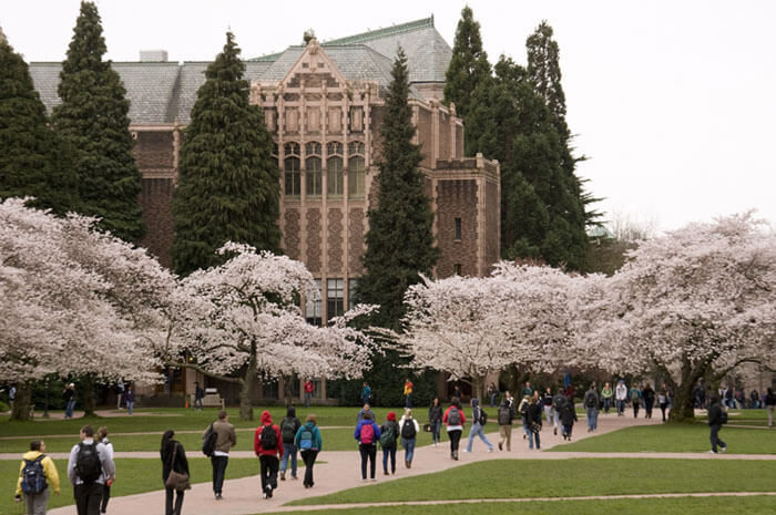 University of Washington online bachelors degree in early childhood education