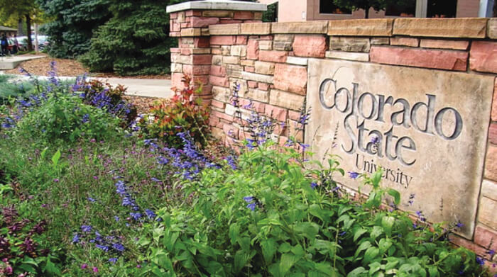 Colorado State University Global Campus - online colleges in Colorado