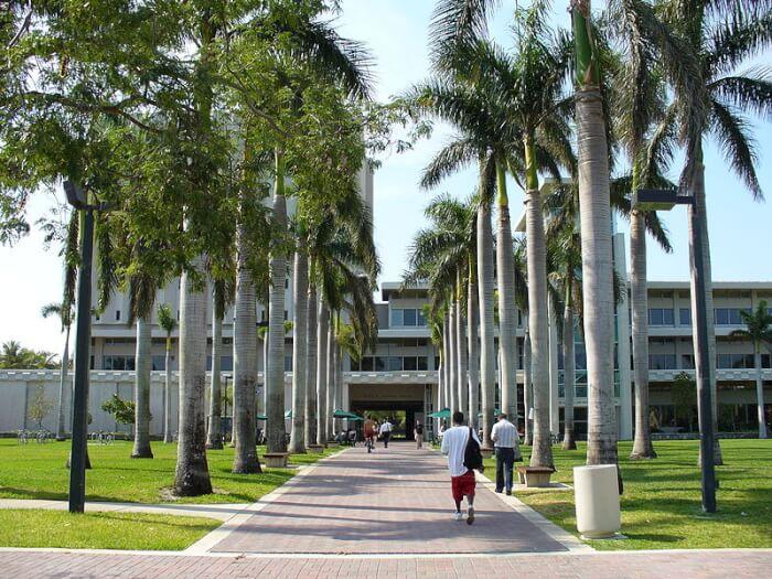 university-of-miami-liberal-south