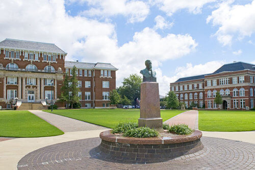 Mississippi State University early childhood education bachelors degree online