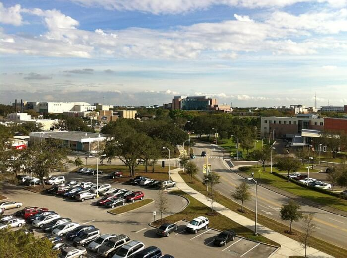 university-of-south-florida-criminology