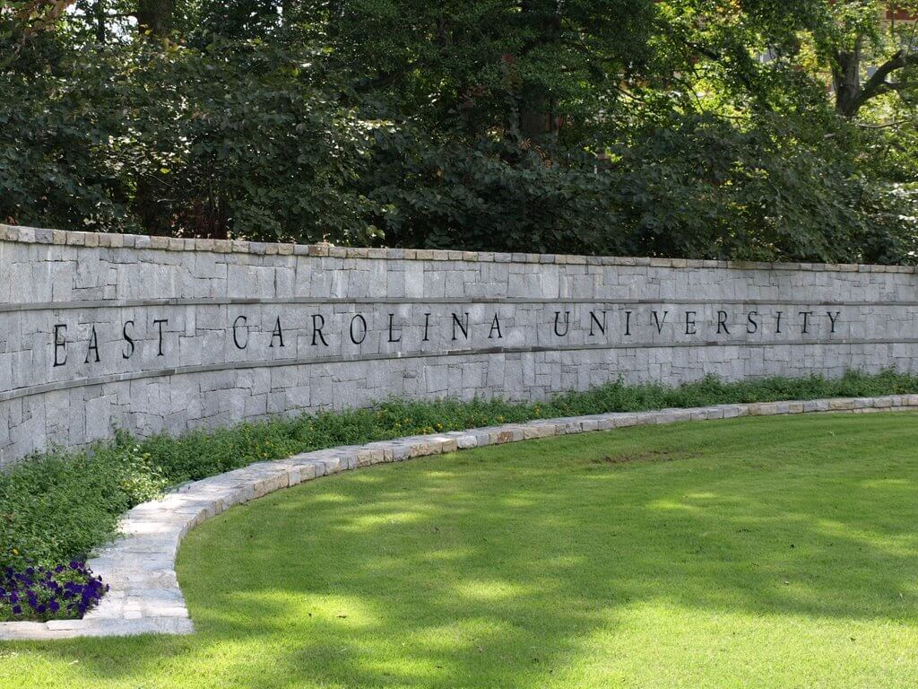 east carolina university best online business degree