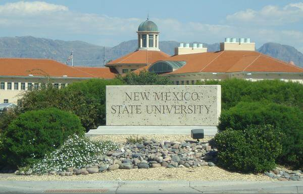 New Mexico State University top online colleges for business