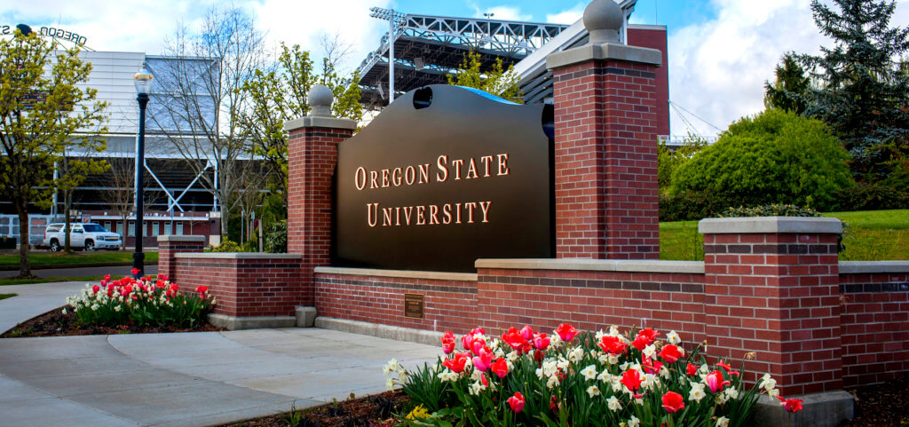 oregon state university best online business school
