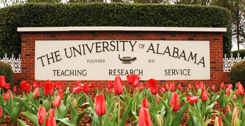 university of alabama online hospitality degree program