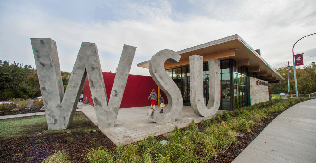Washington State University's Global Campus online accounting degree best business schools