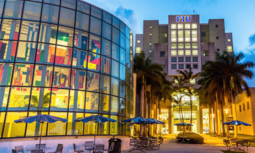 florida international university online bachelors degree programs