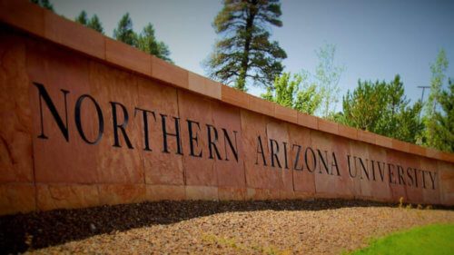 northern arizona university top online colleges BA in psychology