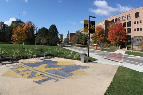 university of michigan flint best schools online colleges