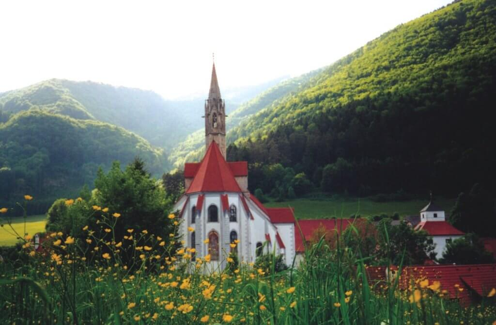 Franciscan University of Steubenville earn a degree abroad