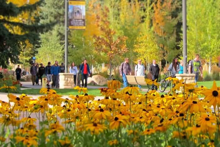 university of wyoming easier colleges to get admitted