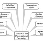 6 Most Affordable Organizational Psychology Doctoral Degrees Online