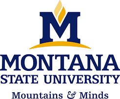 Montana State University - The 50 Most Technologically Advanced Universities