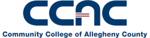 10 Great Value Colleges for an Online Associate in Network Security: Community College of Allegheny County
